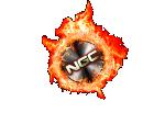 NGC-Logo-transparenter background.png